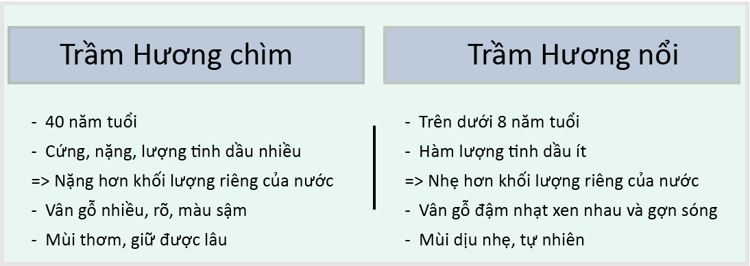 tram-huong-ngam-nuoc-3